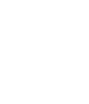 Perfect Storm Logo
